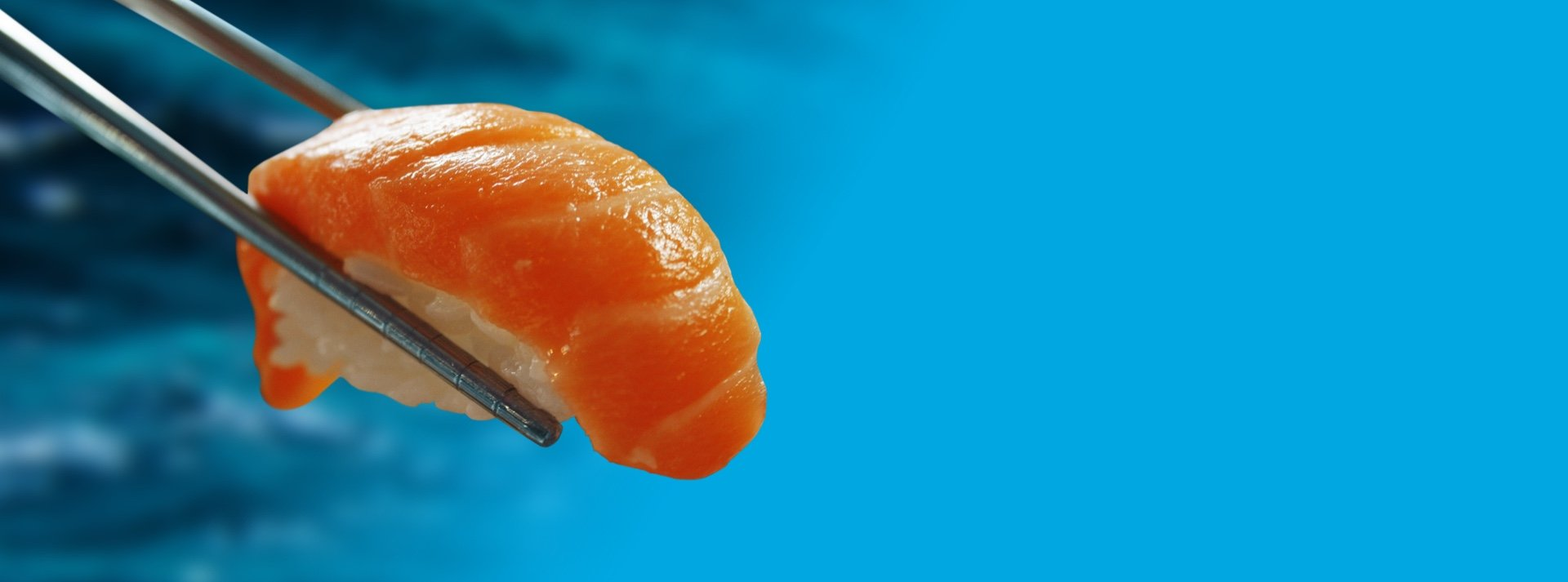 Salmon sushi being held by chopsticks
